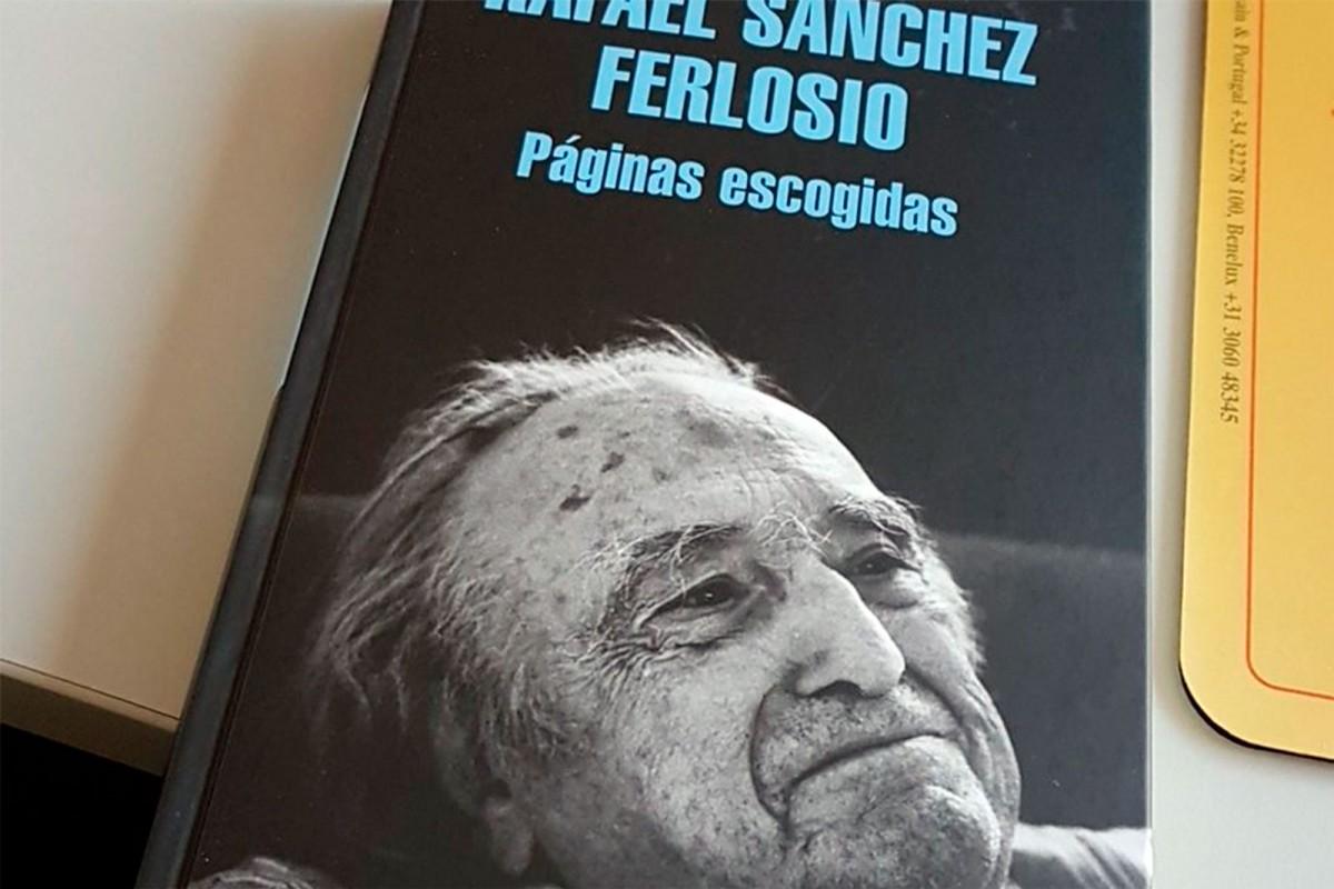 Seminario 'Clásicos vivos de la literatura europea' de Celia Ruiz
